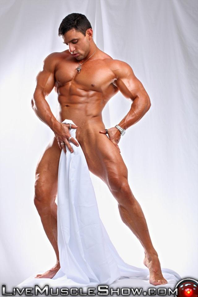 Gay adult body builder sites