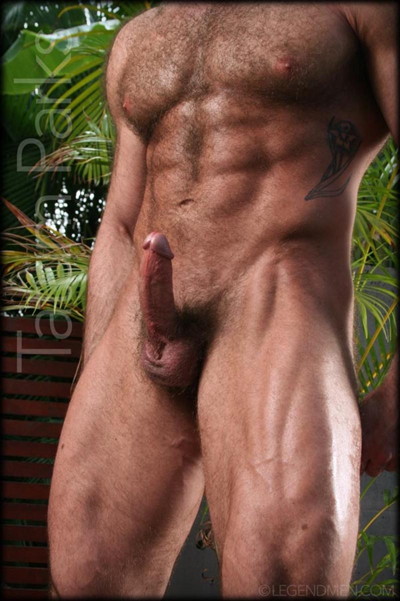 big hairy gay porn