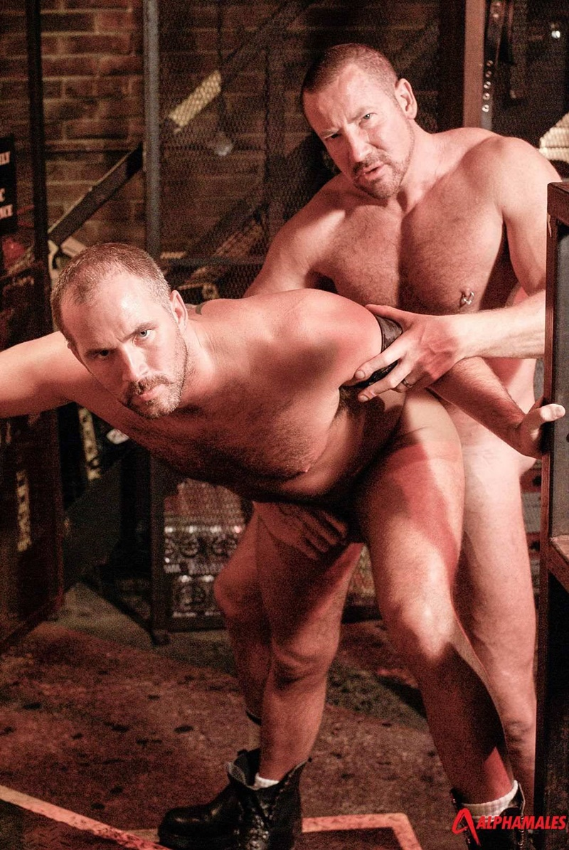alphamales-booted-hairy-chest-hunks-rough-men-dane-hyde-cocksucker-trojan-rock-huge-thick-cock-jockstrap-anal-assplay-rimming-011-gay-porn-sex-gallery-pics-video-photo