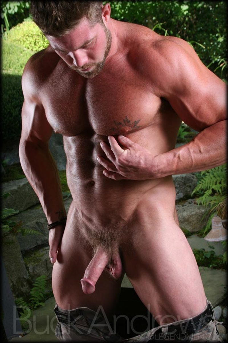 Gay male sex cocks