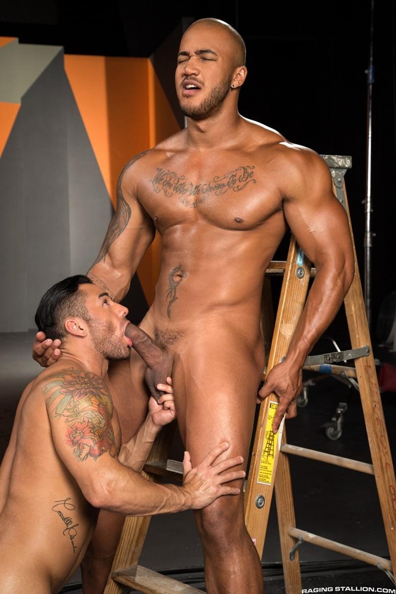 brazilian gallery gay
