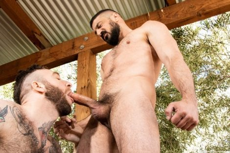Hairy hunks Marco Napoli and Manuel Scalco hardcore ass fucking